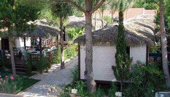 Location vacances languedoc roussillon s jour camping et - Camping la croix du sud port barcares ...
